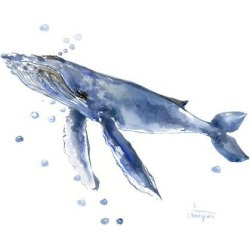 Giclee Print: Humpback Whale 4 by Suren Nersisyan: 12x16in found on Bargain Bro India from Art.com for $30.00