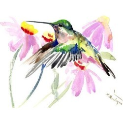 Art Print: Hummingbird 2 by Suren Nersisyan: 18x24in found on Bargain Bro from Art.com for USD $19.00