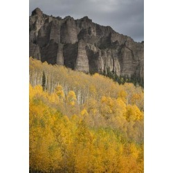 Photographic Print: Colorado, Cimarron Range. Autumn Colored Aspens and High Mesa Pinnacles by Jaynes Gallery: 24x16in