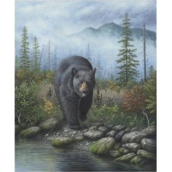 Giclee Print: Smoky Mountain Black Bear by Robert Wavra: 24x18in found on Bargain Bro from Art.com for USD $19.00