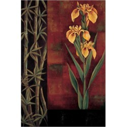 Giclee Print: Yellow Iris by Jill Deveraux: 32x24in found on Bargain Bro from Art.com for USD $40.28
