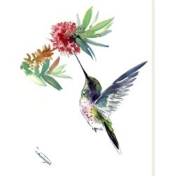 Stretched Canvas Print: Hummingbird by Suren Nersisyan: 32x24in found on Bargain Bro India from Art.com for $135.00