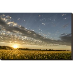 Stretched Canvas Print: Sunset Over the Golden Meadow by Don Schwartz: 15x22in found on Bargain Bro India from Art.com for $125.00