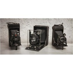 Art Print: Three Old Cameras in a Row: 9x12in