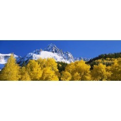 Photographic Print: Mountains Covered in Snow, Sneffels Range, Colorado, USA: 42x14in