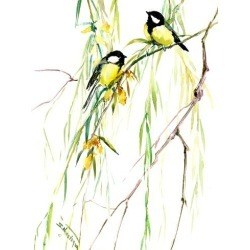 Art Print: Great Tits And Willow by Suren Nersisyan: 16x12in found on Bargain Bro India from Art.com for $20.00