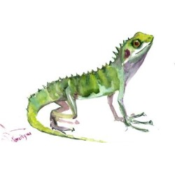 Art Print: Agama Lizard by Suren Nersisyan: 12x16in found on Bargain Bro from Art.com for USD $15.20