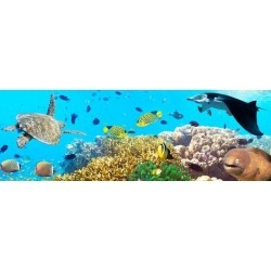 Photographic Print: Underwater Panorama by GoodOlga: 24x8in