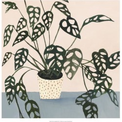 Art Print: Houseplant I by Victoria Borges: 20x20in found on Bargain Bro Philippines from Art.com for $30.00