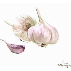 Art Print: Garlic by Suren Nersisyan: 12x16in found on Bargain Bro from Art.com for USD $15.20