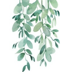 Giclee Print: Tropical Leaf Eucalyptus by Victoria Nelson: 24x18in found on Bargain Bro India from Art.com for $40.00