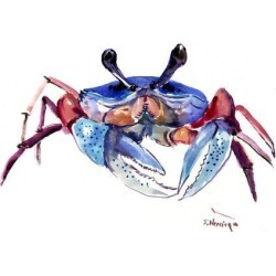 Art Print: Crab3 by Suren Nersisyan: 24x32in found on Bargain Bro from Art.com for USD $26.60