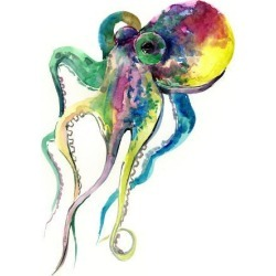 Art Print: Fine Art Octopus 2 by Suren Nersisyan: 16x12in found on Bargain Bro India from Art.com for $20.00
