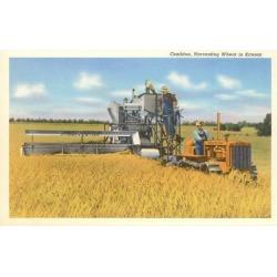 Art Print: Combine Harvesting Wheat in Kansas Art Print: 24x18in