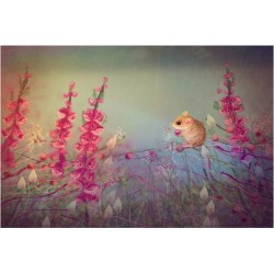 Premium Giclee Print: Dormouse party by Claire Westwood: 9x12in