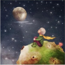 Art Print: The Little Prince with a Rose on a Planet in Beautiful Night Sky, Illustration Art by natalia maroz: 24x24in