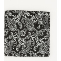 Le Chateau Mens - Paisley Print Microfibre Pocket Square in Black/White found on Bargain Bro India from Le Chateau Stores for $14.99
