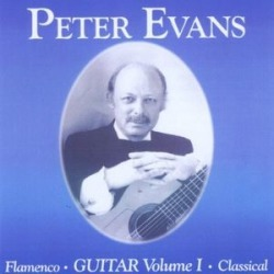 Flamenco & Classical Guitar Vol. 1