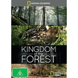 Kingdom of the Forest (IMPORT) found on Bargain Bro India from Deep Discount for $9.46