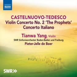 Violin Cons