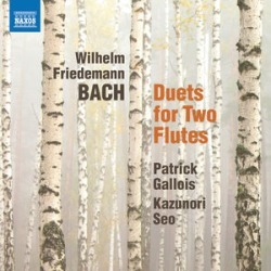 Duets for 2 Flutes