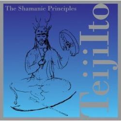 Shamanic Principles