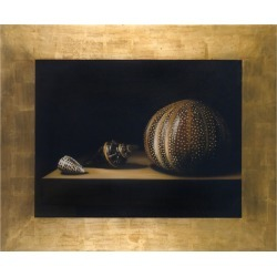 Bianchi Arte Designer Paintings, Oil on Canvas Shells Painting found on Bargain Bro India from FORZIERI  AU for $2660.19