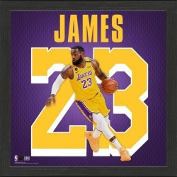 NBA Los Angeles Lakers LeBron James Impact Jersey Photograph Highland Mint GameStop found on Bargain Bro from Game Stop US for USD $34.19