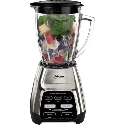 Master Series 800 Stainless Steel Blender