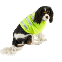 Dog Walk Reflective Dog Coat