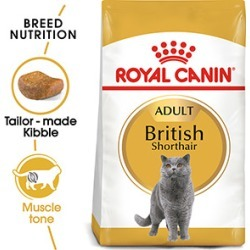 Royal Canin Feline Breed Nutrition British Shorthair Dry Adult Cat Food 2Kg found on Bargain Bro UK from Pets at Home