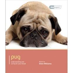 Pug Dog Expert