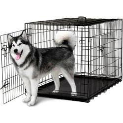 Paws & Pals Double Door Dog Training Crate, PTCG01-24 found on Bargain Bro Philippines from Tractor Supply for $54.99