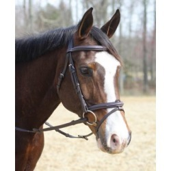 Henri de Rivel Kushy Bridle with Detachable Flash, 24184 found on Bargain Bro Philippines from Tractor Supply for $122.99
