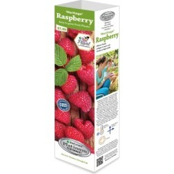DeGroot Raspberry Heritage; 1 Plant found on Bargain Bro India from Tractor Supply for $5.99