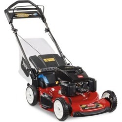 Toro Recycler 22 in. Personal Pace Self Propelled Lawn Mower with Bagger, 20372