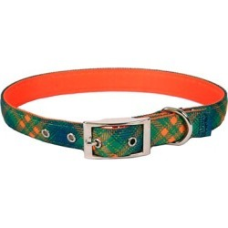 Yellow Dog Design Green Kilt Uptown Collar, GRK200 found on Bargain Bro Philippines from Tractor Supply for $22.99