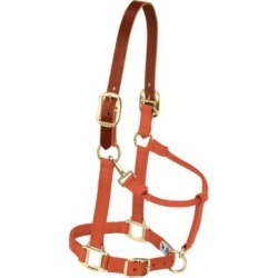 Weaver Leather Adjustable Breakaway Nylon Horse Halter found on Bargain Bro Philippines from Tractor Supply for $27.99