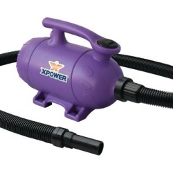 XPOWER B-2 Pro at Home Pet Grooming Force Dryer & Vacuum