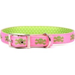 Yellow Dog Design Skulls Uptown Collar, PGS200 found on Bargain Bro Philippines from Tractor Supply for $21.99