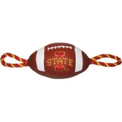 Pets First Co. Iowa State Cyclones Pebble Grain Football Toy