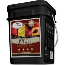 Wise Company Freeze Dried Fruit Bucket, 156 Servings