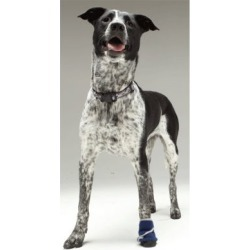 Healers Medical Dog Boot, Single Unit found on Bargain Bro from Tractor Supply for USD $16.71