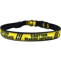 Yellow Dog Design Hearing Impaired LED Dog Collar found on Bargain Bro Philippines from Tractor Supply for $19.99