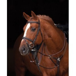 Amigo Bridle with Rubber Reins, SBRB6I found on Bargain Bro India from Tractor Supply for $99.99
