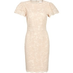 Women's Rachel Parcell Lace Sheath Dress, Size X-Large - Beige (Nordstrom Exclusive) found on Bargain Bro India from LinkShare USA for $149.00