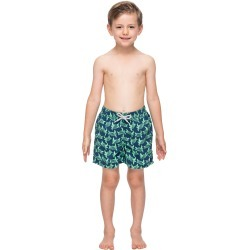 Toddler Boy's Tom & Teddy Turtle Swim Trunks, Size 1-2Y - Blue found on Bargain Bro India from Nordstrom for $59.95