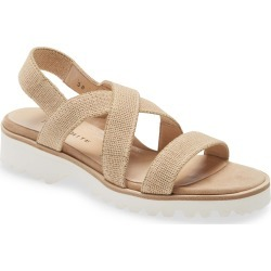 Women's Ron White Catrina Water Resistant Slingback Sandal, Size 8.5US - Beige found on Bargain Bro India from Nordstrom for $345.00
