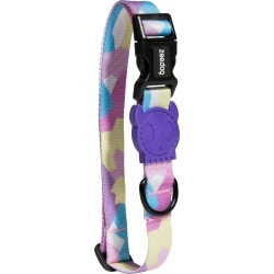 Zee. Dog Dog Collar, Size Medium in Candy at Nordstrom