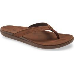 Women's Olukai Aukai Flip Flop, Size 5 M - Brown found on Bargain Bro India from Nordstrom for $80.00
